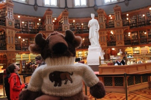 Reggie at Parliament Library